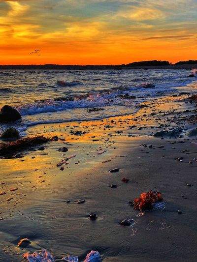 Beach Water Sea Sunset Land Sky Scenics - Nature Tranquil Scene Cloud - Sky Idyllic No People Horizon Over Water Horizon Sand Orange Color Tranquility Rock Nature Outdoors Beauty In Nature