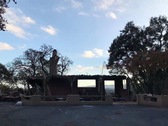 Tree Sky Cloud - Sky Day Built Structure Outdoors Nature No People Architecture Growth Beauty In Nature Tubbs Fire Fire Damage Burned House Wine Country