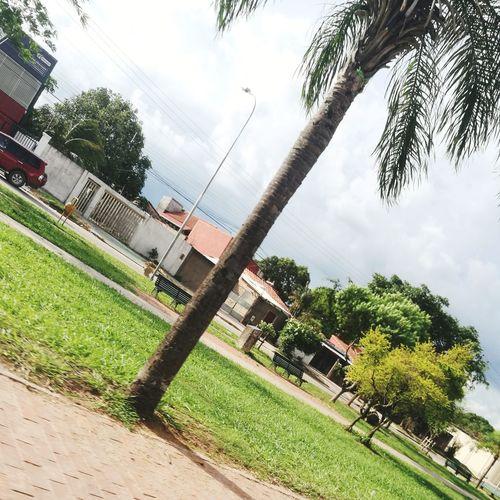 Las Bellas Calles De Mi Tierra Linda Santa Cruz