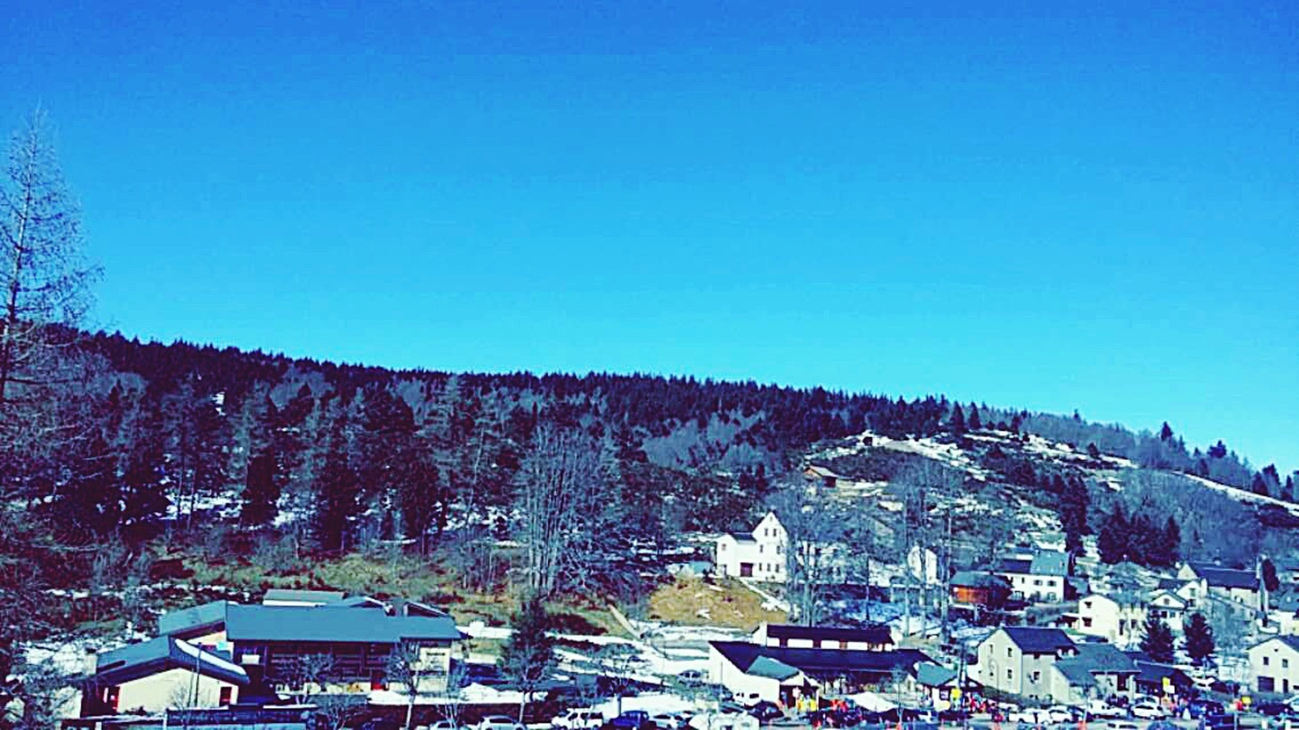 building exterior, architecture, built structure, clear sky, house, copy space, blue, residential structure, tree, residential building, mountain, town, day, outdoors, residential district, low angle view, high angle view, roof, no people, village