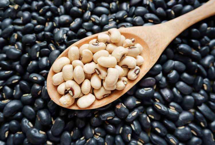 Beans Natural Beauty Spoon Abundance Black Gram Black Peppercorn Food Food And Drink Freshness Healthy Eating Ingredient Mungo Nature No People Nutrition Nutritious Organic Oriental Raw Food Sack Soya Soybeans Still Life Wooden Wooden Spoon