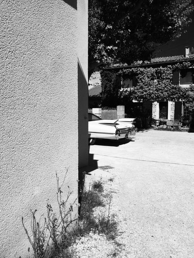 Building Exterior Built Structure Architecture Day Outdoors No People Tree Stationary Nature France Oldtimer Car Streetphotography Blackandwhite Photography Blackandwhite Hot Day Saintremydeprovence Provence EyeEmNewHere