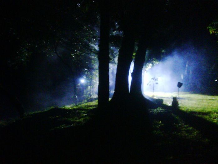 One midnite at woods: in a film shooting session. Shillhouette Nightshot Nightphoto Woods