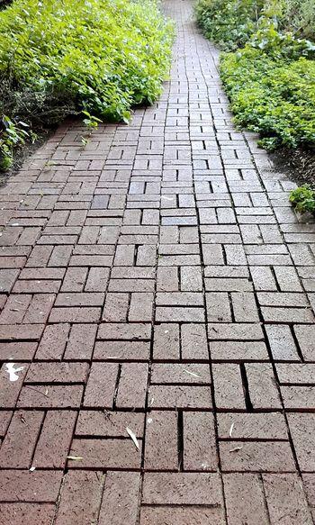 Paving Bricks Paving Patterns Paved Path Paved Pathways Pavement Pavementporn Pavement Patterns Pavers Paving Walkway Paving Brick Path