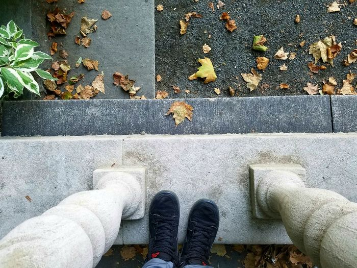 Amazing_captures Nature Bryantpark Hanging Out Feet On The Ground Good Vibes Park Leaves On The Ground Leaves🌿 Ground Level View Bright And Dark Colors Humans Vs Nature Check This Out! Fine Art Directly Above Shoes Nikesb