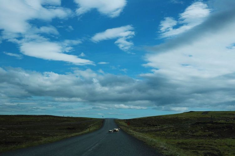 Road Cloud - Sky Sky Transportation Day The Way Forward Landscape Outdoors Nature Scenics Tranquility No People Beauty In Nature Grass Iceland The Street Photographer - 2017 EyeEm Awards Summer Road Tripping