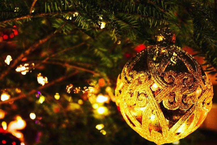 Christmas Christmas Tree Celebration Christmas Decoration Decoration Tradition Night Christmas Ornament Illuminated Christmas Lights Tree Hanging Holiday - Event Close-up No People Bauble Indoors  Yokohama 横浜 赤レンガ倉庫