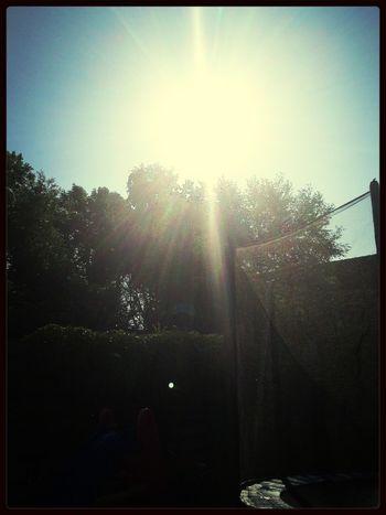 heerlijk in het zonnetje