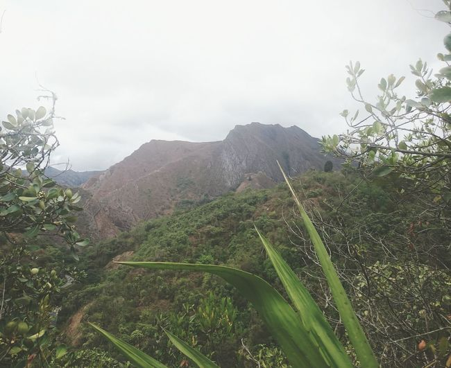 Esto es COLOMBIA Hanging Out Taking Photos Check This Out Hello World Enjoying Life Colombia ♥  Colombia Mountains Sky Nature Freedom Peace Peace And Quiet No Civilization No City Earth Pacho Cundinamarca Feel The Journey