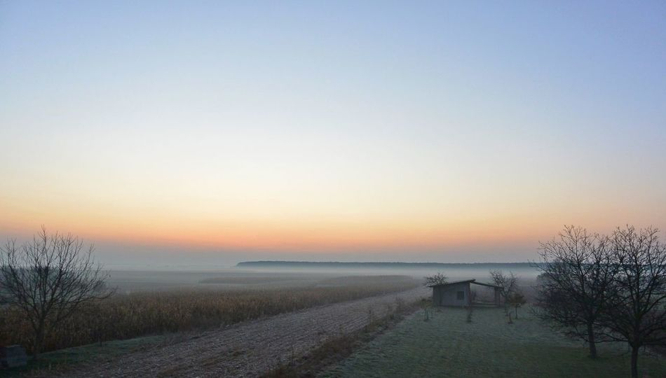 Beauty In Nature Colors Fields Fog Horizon Landscape Little House Morning Nature Nature Peaceful Sky Sunrise Tranquility Tree View Winter