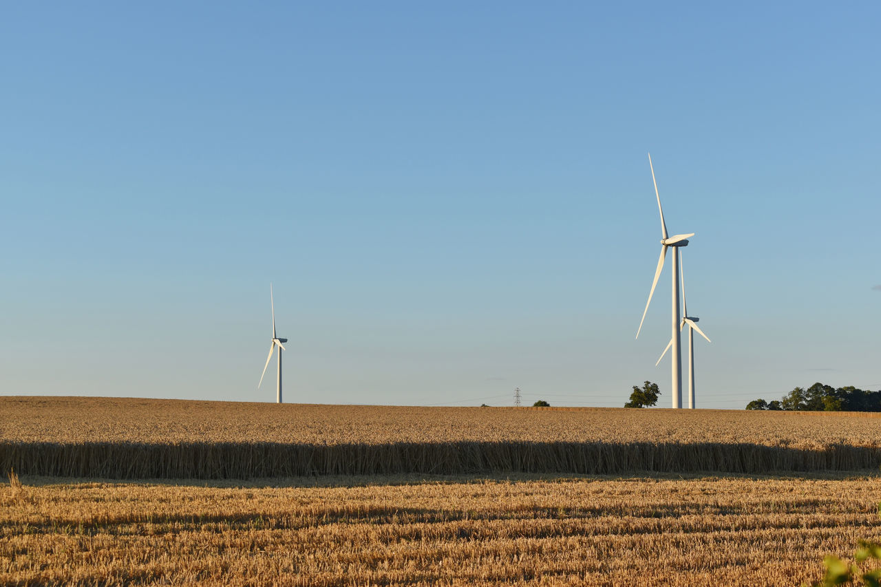 wind turbine, wind power, alternative energy, environmental conservation, renewable energy, fuel and power generation, windmill, industrial windmill, field, rural scene, nature, no people, day, outdoors, landscape, tranquility, traditional windmill, clear sky, blue, beauty in nature, sky, technology