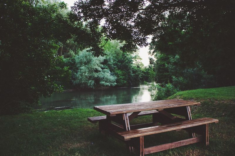 Chair and table by lake in forest