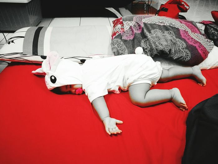 Bunnyrabbit Is Dead