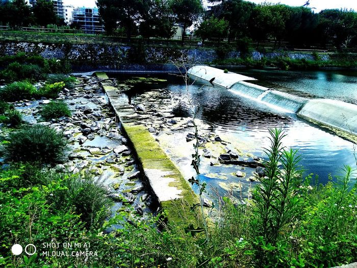 la natura in citta Fiume Water Diga Aria Aperta City Life InTheMiddleOfNoWhere Oil Spill Car Wash Spraying Tree Full Frame High Angle View Cleaning Grass Close-up Water Pollution Bubble Wand