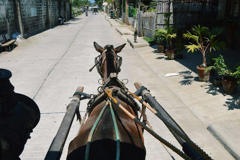 Vigan Cityscape Caleza Ride