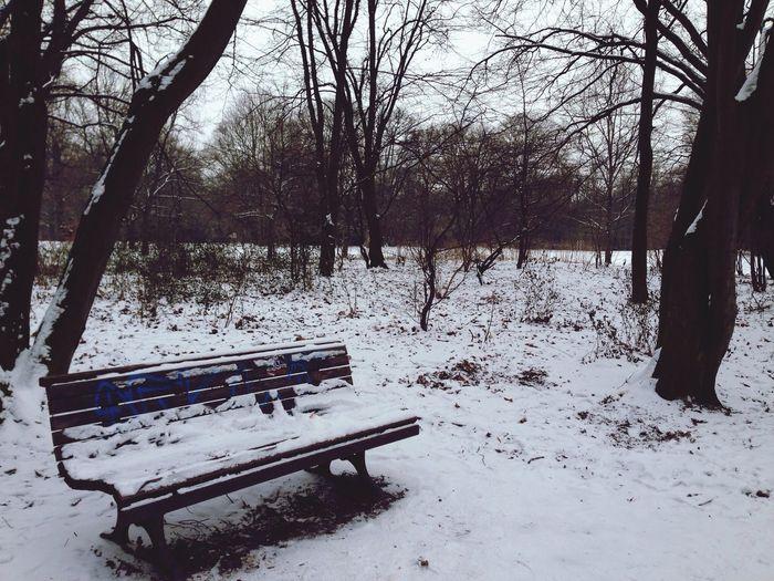 Snow with Leonie