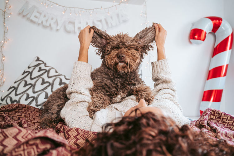 Woman lying on bed holding dog ears at home
