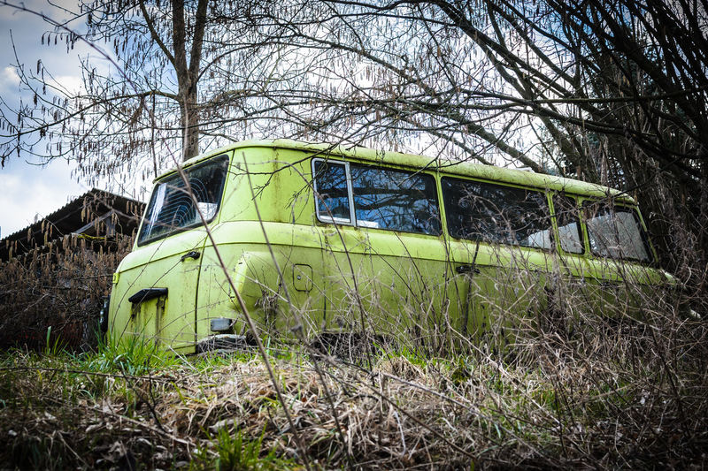 Barkas - B1000 Auto Autowrack B1000 Barkas Car Copse DDR East Germany GDR Gestrüpp Gras  Grass Grassy Hidden Lost Lost Place Lost Places Run-down Thuringen Thuringia Versteckt Wrack Wreck Wrecked Wrecked Car