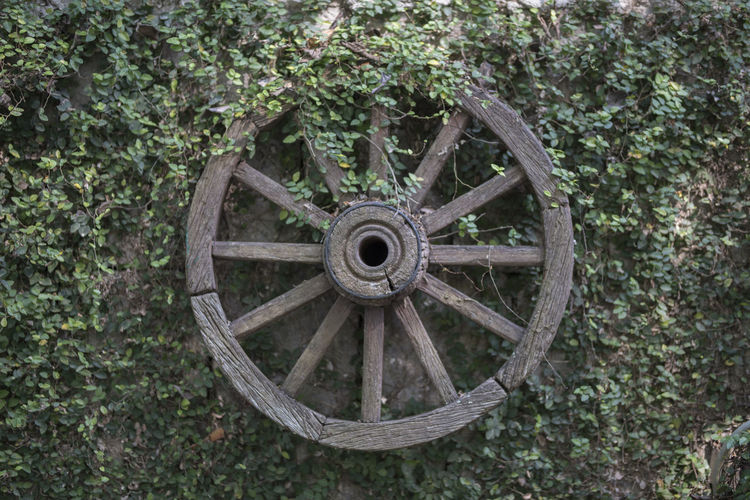 Close-up of old wheel against trees