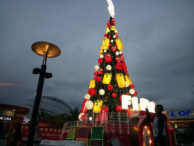 Christmas is coming! No People Sky Illuminated Outdoors SMMoaArena Adventure Club Seaside That's Me The Journey Is The Destination Hello World Beauty Taking Photos Hanging Out Check This Out Enjoying Life