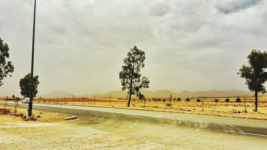 EyeEmNewHere Tree Sky Sand Outdoors Landscape Nature Day Desert Road Scenics No People Beauty In Nature Storm Wind Wether Tree Alone In The World