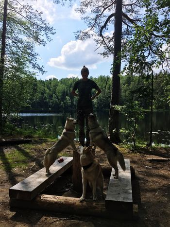 Full Length Tree One Person Day Men Real People Outdoors Sitting Sky Leisure Activity Casual Clothing Nature Statue Lifestyles Sculpture Young Adult Standing Mammal One Man Only Adult Husky Sommergefühle Siberian Husky Dog