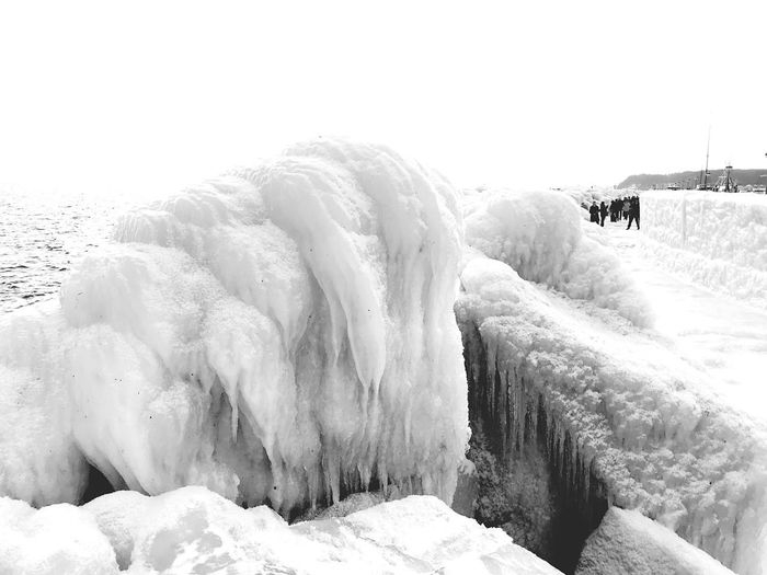 Mole unter Eis
