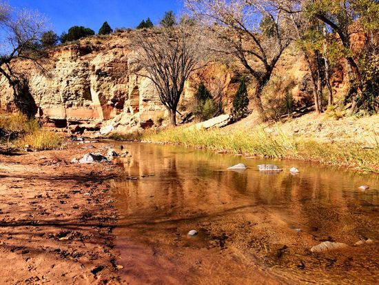 Zion Zion National Park Utah Tree Water Nature Reflection Beauty In Nature Outdoors Tranquil Scene Scenics Tranquility Sky Gorgeous Tranquility Hikingphotography Hiking Adventures Amazing Breathtaking View Loveit Hiker