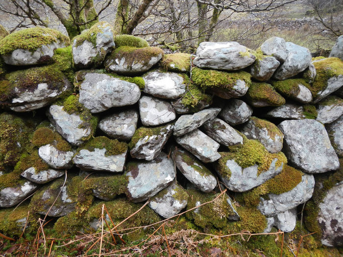 Emerald Isle Damp Climate Lichen Outdoors Rock Rock - Object Rough Stone Stone - Object Stone Wall Wall