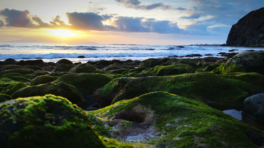 Moss Covered Rocky Shore Against Cloudy Sky
