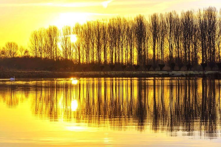 Water Reflections Nature Sunrise Showcase: February