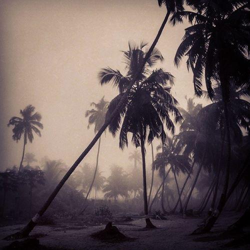 The Harmattan haze at the Beach . Lagos Nigeria Africa westafrica haze snapitoga