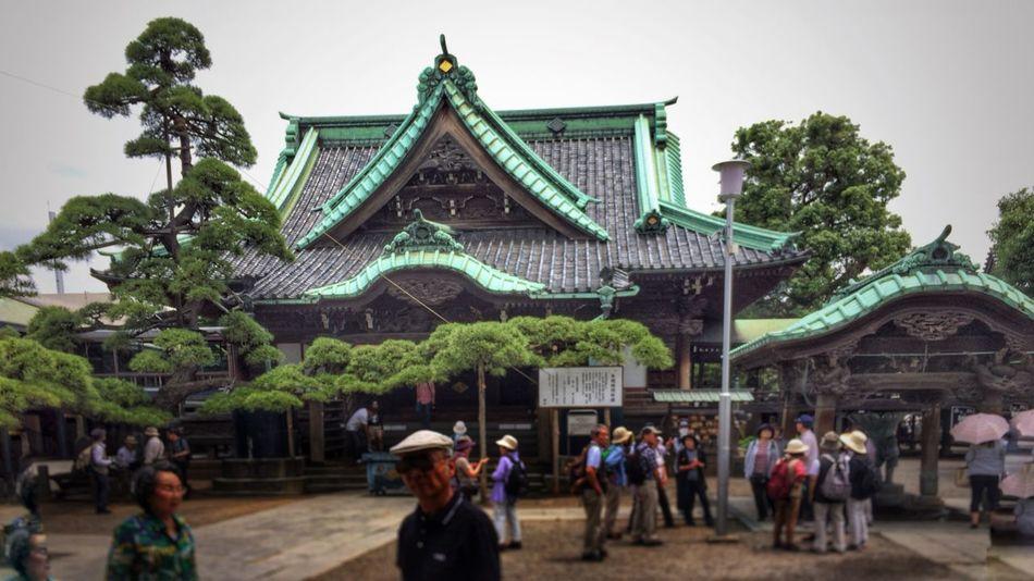 Cool Japan Japan 柴又帝釈天 Japanese Temple