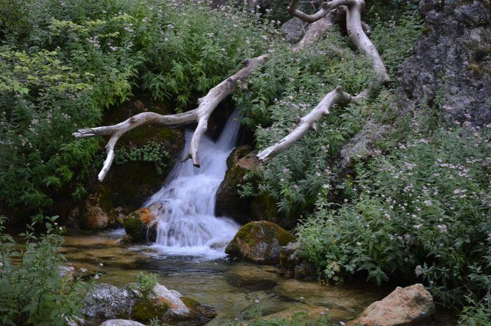 Nacimiento de Rio Mundo. EyeEm Nature Lover Enfocae Enjoying Life EyeEm Best Shots