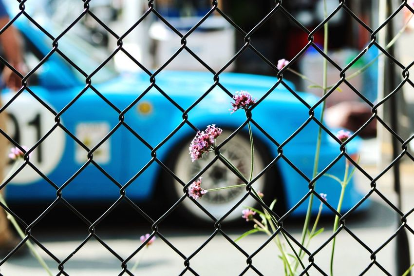 Chainlink Fence Safety Protection Metal Day No People Focus On Foreground Outdoors Close-up Nature City Sky Porsche Racecar