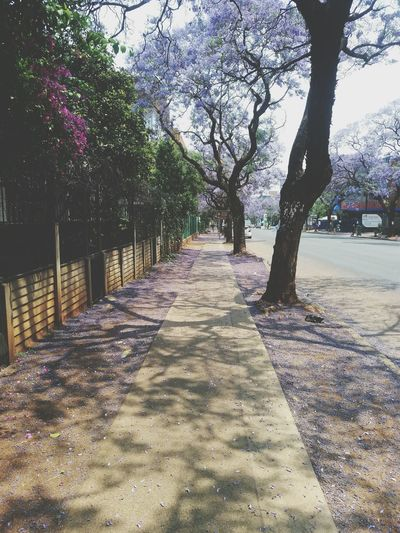 The streets are not for everyone thats why they made sidewalks The Streets Sidewalks Pretoria South Africa