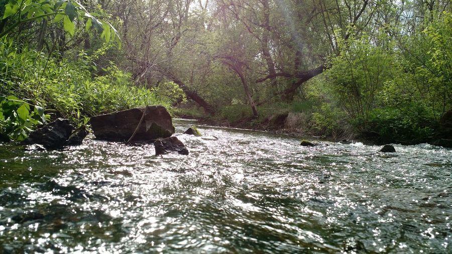 Water Stream Peace Peacefull Serenity Serenity