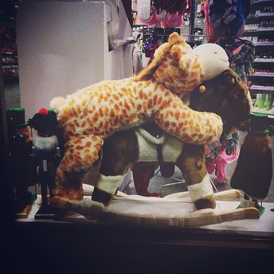 {instagram post} holiday store window: giraffe indulges in horseplay #nyc #toys #holiday #kink #funny #hobbyhorse NYC Toys Holiday Funny Kink Hobbyhorse