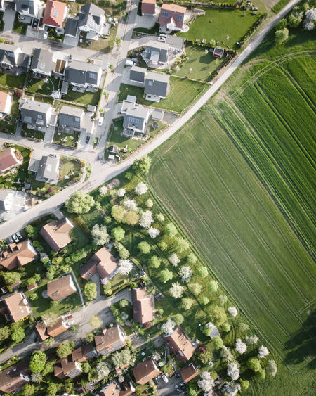 Agriculture DJI X Eyeem Field From Above  Green Color Growth Morning Light Nature New Vs Old Road Trees Urban Nature Aerial Photography Day Dronephotography Environment Flying Grass Green Color Grey Roofs Landscape Outdoors Rural Scene Spring Suburb