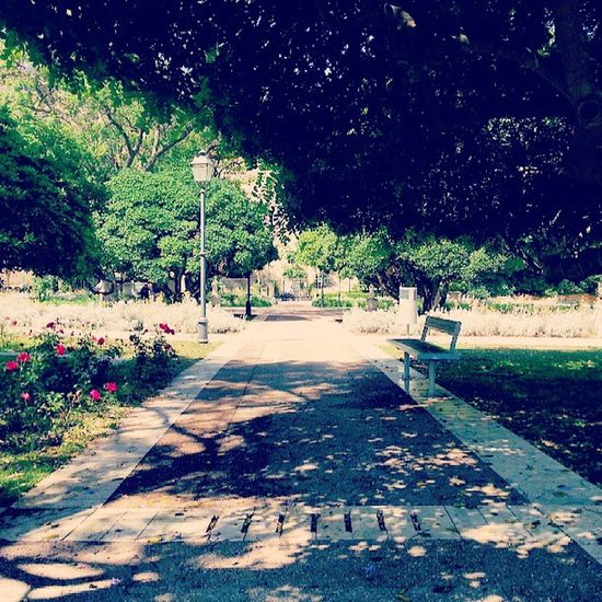 ritorno al passato giardini pubblici♥♥ hanno sempre il loro fascino :D Infanzia