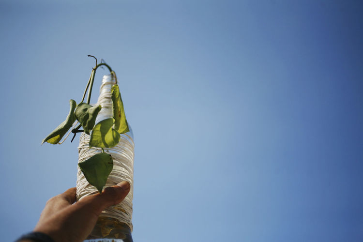 Low section of person holding bottle vase against clear blue sky