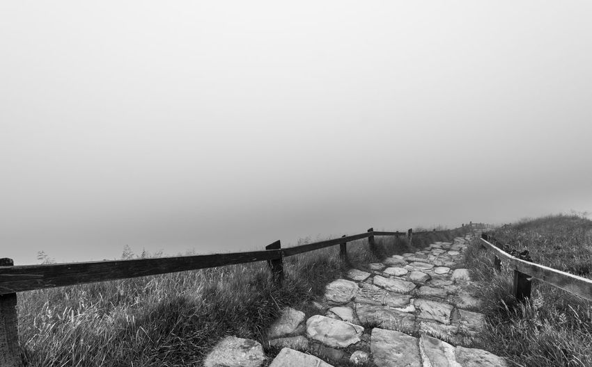 A very foggy