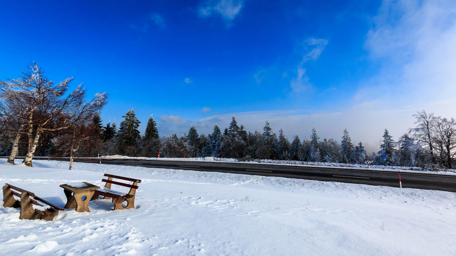 White & Blue Snow Winter Cold Temperature Tree Plant Nature Sky Beauty In Nature Scenics - Nature White Color Tranquility Tranquil Scene Day Covering No People Land Field Environment Non-urban Scene Outdoors Snowcapped Mountain Blue Blue Sky Bench Roadtrip
