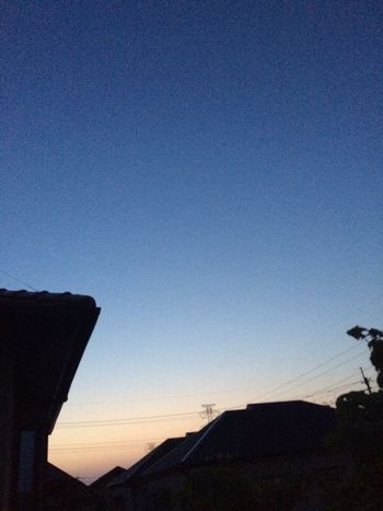 Violet By Motorola Sky Good Morning