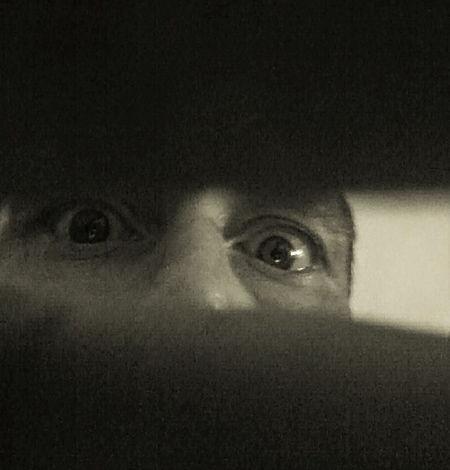 Peek Eyebrow Human Eye Looking At Camera One Person Peekaboo Peeking Spooky