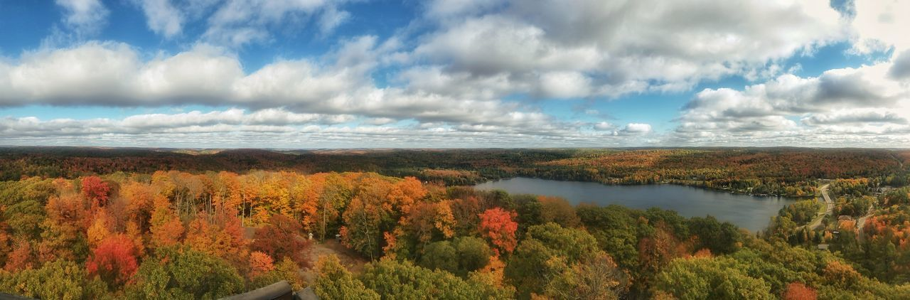 Muskoka Dorset Dorset, Ontario Ontario Ontario, Canada Ontario In The Fall Fall Colors Fall Fall Collection Fall Foliage Canada Beauty In Nature Nature Panoramic Panorama View The Great Outdoors The Great Outdoors - 2016 EyeEm Awards