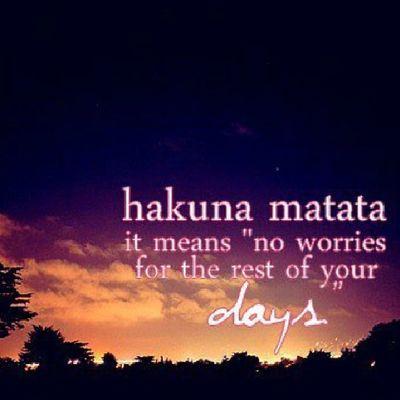 Hakuna Matata Noworries No worriessimbalionkinglionkingcartoonsmovieslegendaryfilmsmoviesiphoneonlyiphonersigerstweegramfollowmelikelikesfollowsinsta
