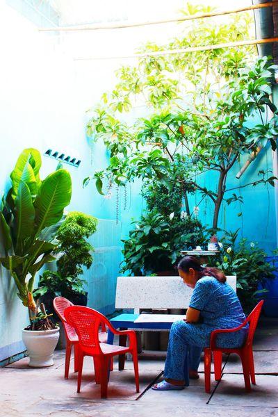 Little garden InVietNam Asianwoman