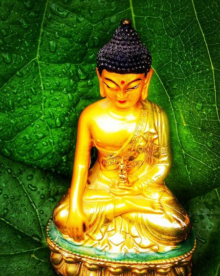 Gautama Buddha Human Representation Green Color Representation Sculpture Statue Male Likeness Art And Craft Close-up Gold Colored No People Spirituality Shiny Craft Front View Religion Indoors  Creativity Idol Belief