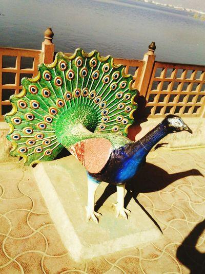 An beautiful pieace of art At Ajmer Enjoying